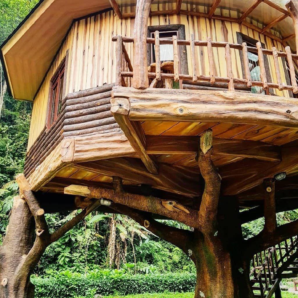 rumah pohon safari lodge bogor