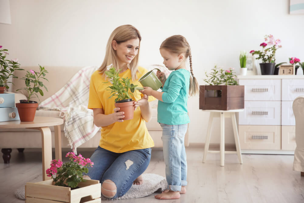 Best Ways To Do Indoor Gardening — Home Garden
