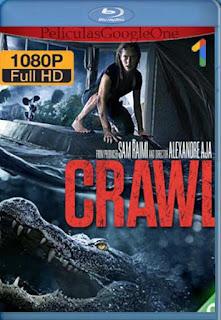 Infierno En La Tormenta (Crawl)[2019] [1080p BRrip] [Latino-Inglés] [GoogleDrive]