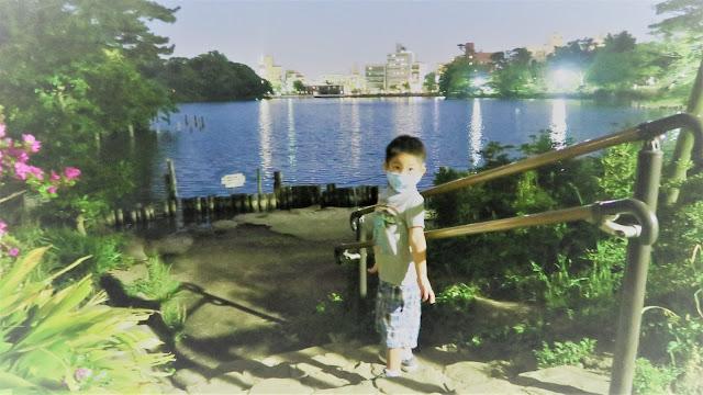 Senzokuike Park at night