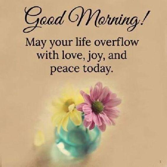 Inspirational Good Morning Flowers Image