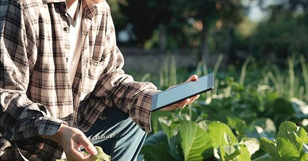 Expo-Agrofuturo-2019-apuesta-sector-agro-Colombia-agricultura