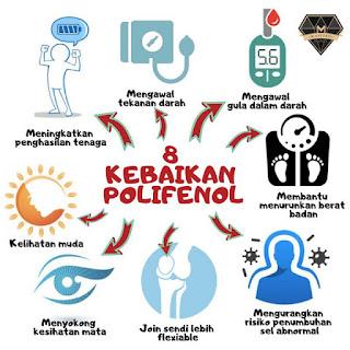8 Kebaikan Polifenol