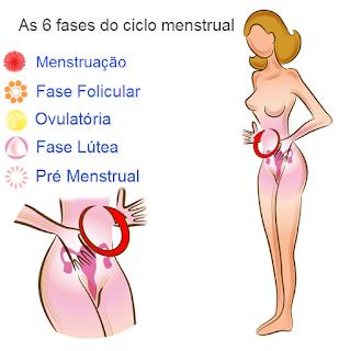 ovulação antes menstruação depois