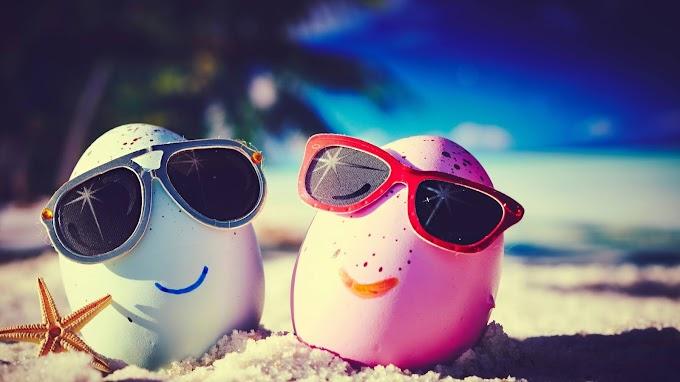 Ovo, Praia, Óculos De Sol, Engraçado, Areia