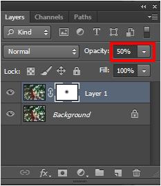 cara membuat efek zoom di photoshop