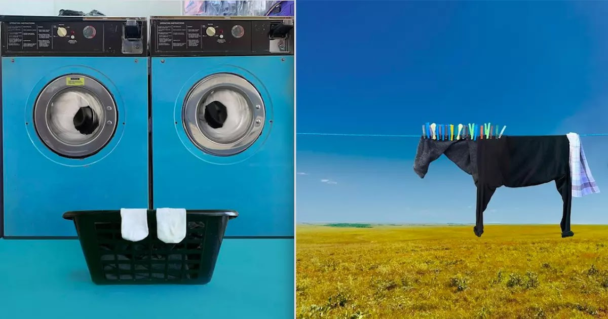 This Artist Creates Amazing Optical Illusions Through The Combination Of Everyday Objects