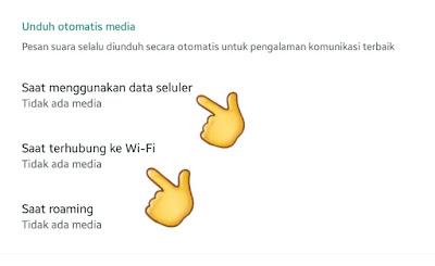 Cara Matikan Unduhan (Download) Otomatis Whatsapp (WA) Serta Fungsinya