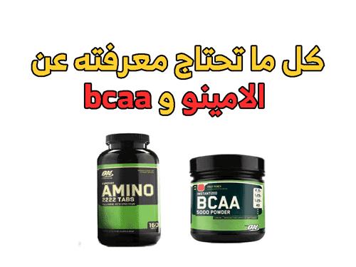 الفرق بين الامينو و bcaa
