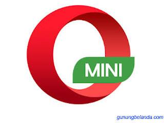 Opera Mini Android Kini Hanya 1 Mb Browsing Tercepat