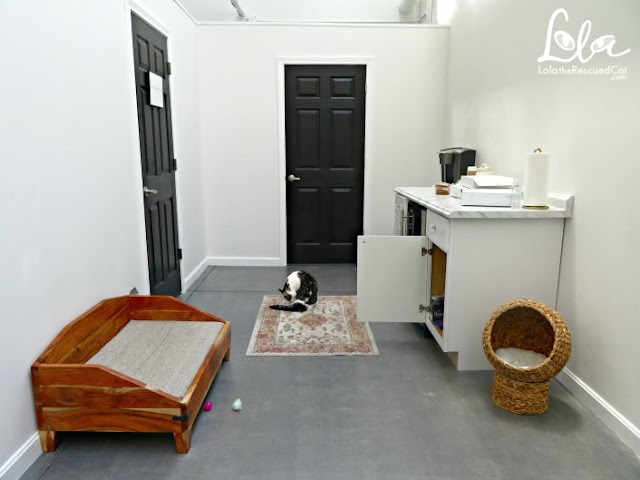 cat cafe|the cat parlour