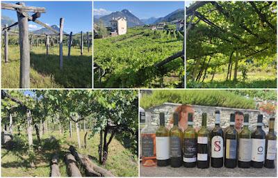 valli ossolane vigne vini