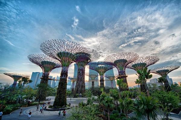 Hệ thống Siêu cây ấn tượng ở Garden by the bay