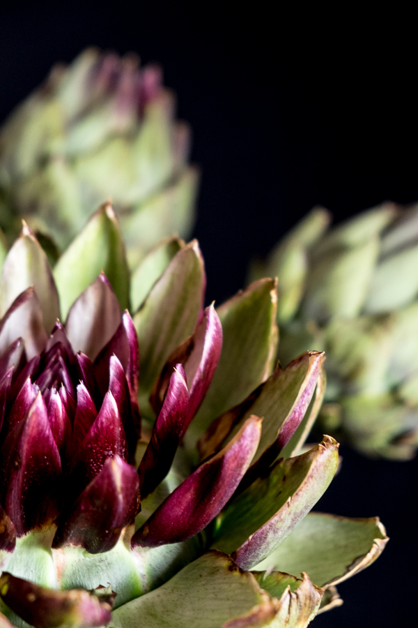 fim.works | Fotografie. Leben. Wohnen. | Floristik | Gemüse in der Vase: Artischocken