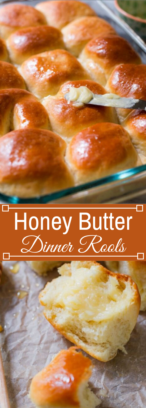 Tried & True Honey Butter Rolls #dinner #easy #party #honey #butter