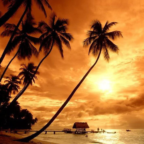 avis Tiki Beach de Galaxie Parfumée, blog bougie, blog parfum, blog beauté