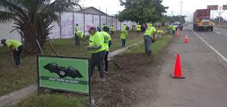 Carabobo Te Quiero mantiene desplegadas sus jornadas de saneamiento y limpieza en el municipio Puerto Cabello y Mora