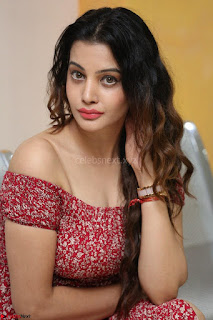 Diksha Panth in a Deep neck Short dress at Maya Mall pre release function ~ Celebrities Exclusive Galleries
