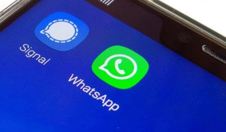 signal-whatsapp