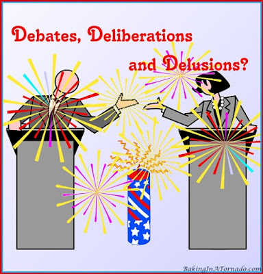 Debates, Deliberations and Delusions, a look at politics in America | graphic designed by and featured on www.BakingInATornado.com | #MyGraphics #politics