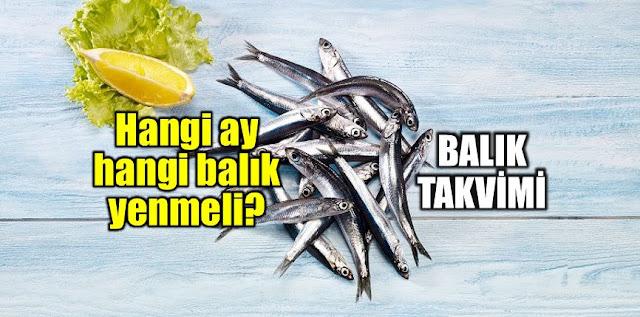 Hangi balık hangi mevsimde lezzetli olur? hangi balık hangi ayda yenilir? aylara göre balık çeşitleri, hangi ay hangi balık yenir? ay ay balık takvimi listesi..