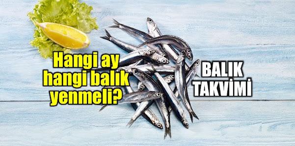 Hangi balık hangi mevsimde lezzetli olur? hangi balık hangi ayda yenilir? aylara göre balık çeşitleri, hangi ay hangi balık yenir? ay ay balık takvimi listesi.