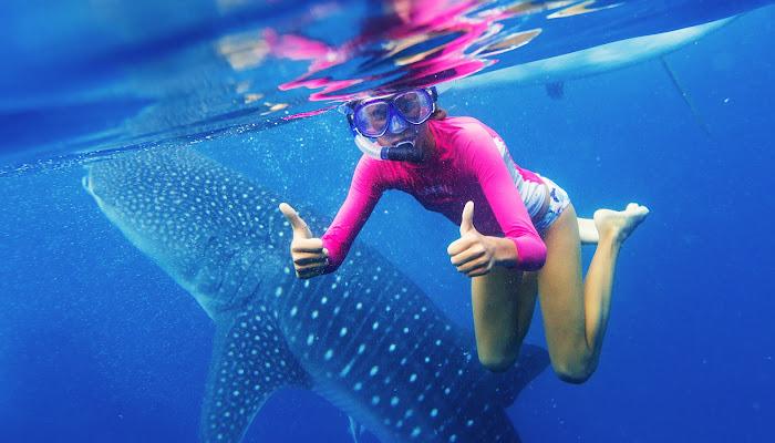 Oslob Whale Shark Tour