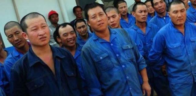 Ketua DPRD Sultra Cek Dokumen 156 TKA China Di Konawe, Hasilnya Nihil Visa Kunjungan