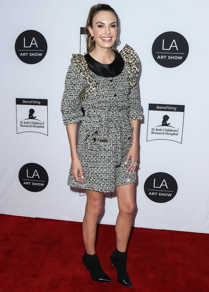 Elizabeth Chambers Clicks at LA Art Show 2020 Opening Night Gala 5 Feb-2020