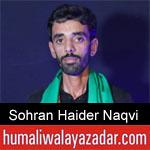 https://humaliwalaazadar.blogspot.com/2019/08/syed-sohran-haider-naqvi-nohay-2020.html