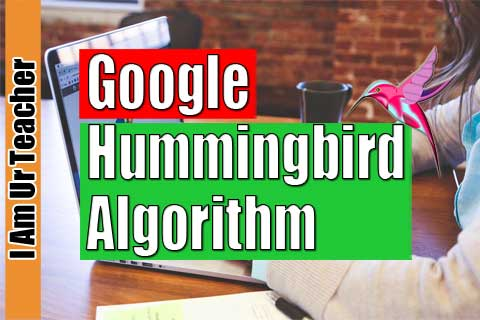 Why google hummingbird algorithm was introduced?