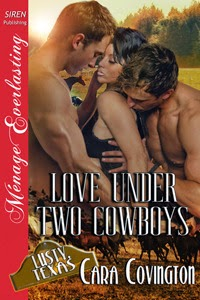 https://www.goodreads.com/book/show/16090861-love-under-two-cowboys