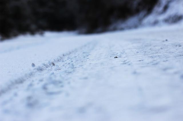 dhanaulti snow fall