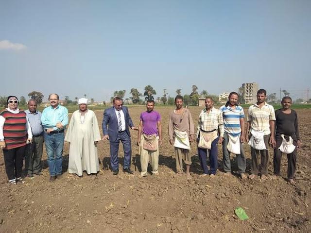 بدء زراعة تجمعية إرشادية لمحصول القمح على مصاطب بمركز الفيوم