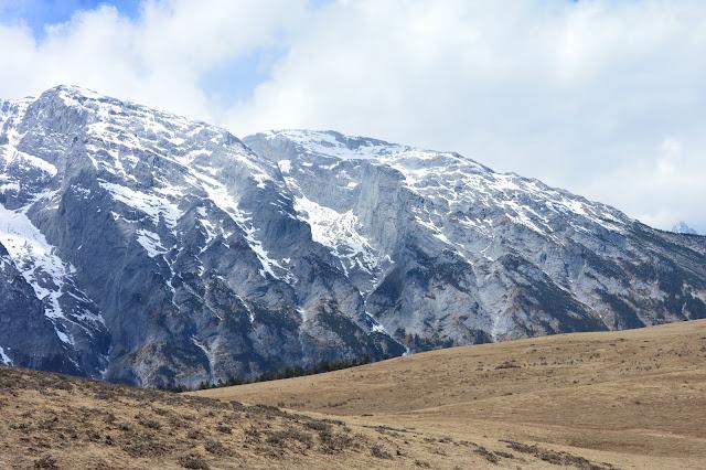 Plaine des yaks au mont enneigé du dragon de jade