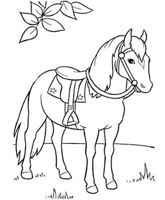 Sketsa gambar kuda
