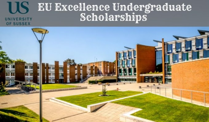 Apply For EU Excellence undergraduate financial aid at University of Sussex in UK, 2020