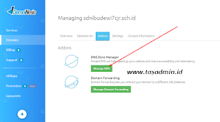 manage dns domainesia