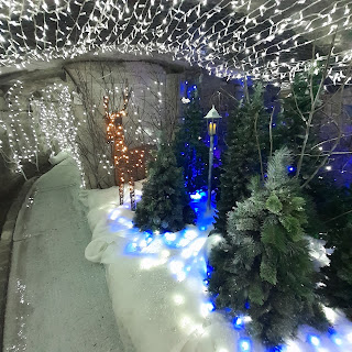 A tunnel, big enough to stand up in, lined with white fairy lights. Two xmas trees to the right, out of which appear a lamppost and a fawn, like Narnia