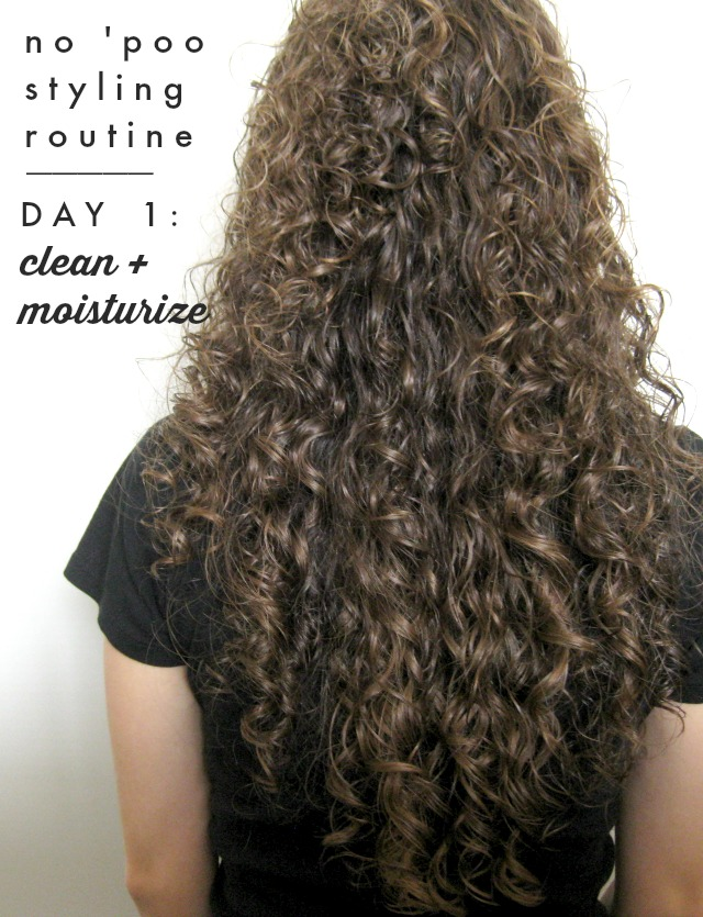 How to Care for + Style Naturally Curly Hair the No 'Poo Way