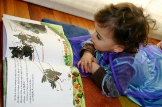 Libro infantil Calvin no sabe volar