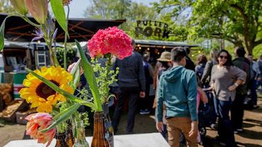 Alstroemerias, mucha fiesta, muchas flores y paisaje en Keukenhof