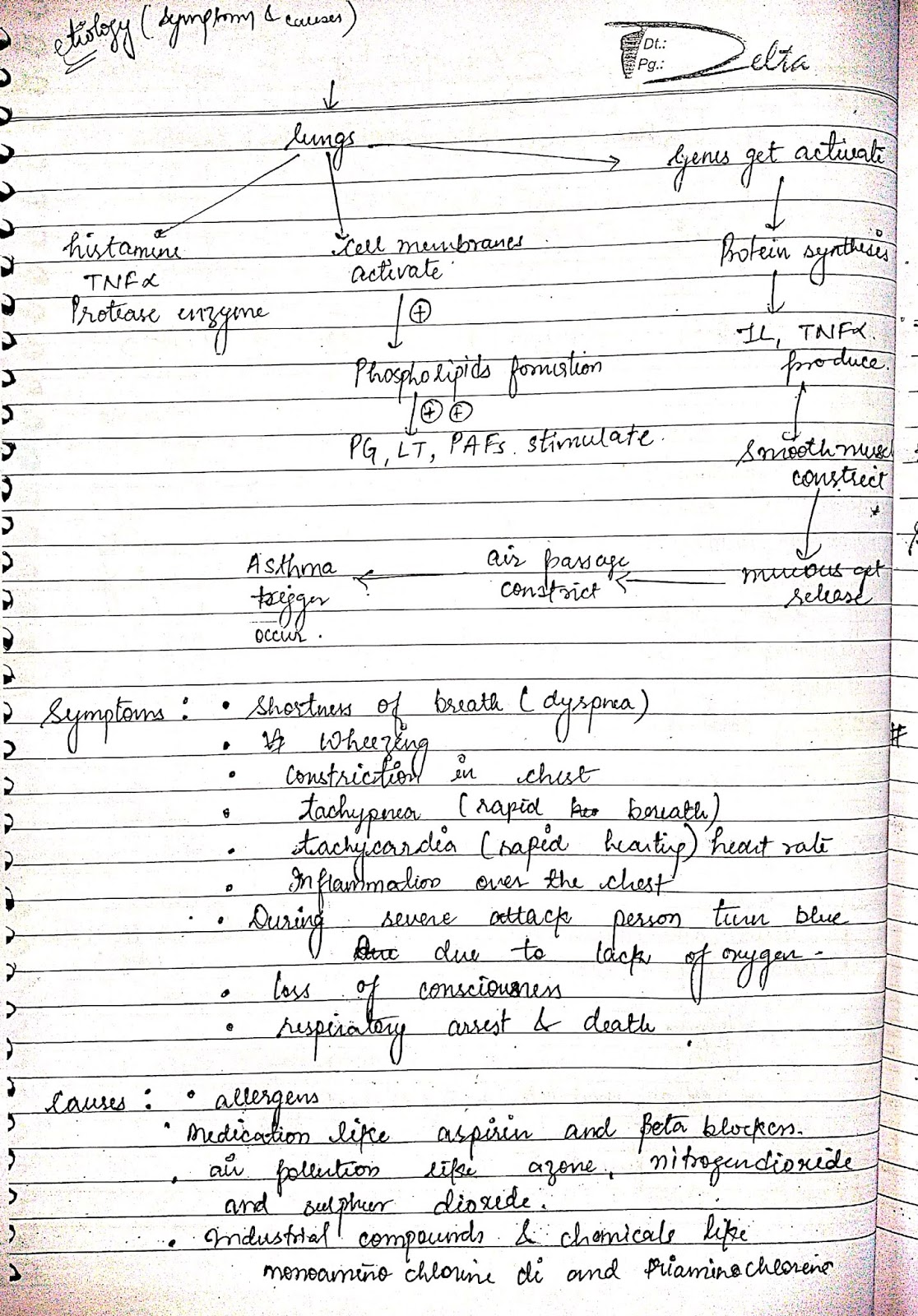 pathophysiology - lung disorders asthma
