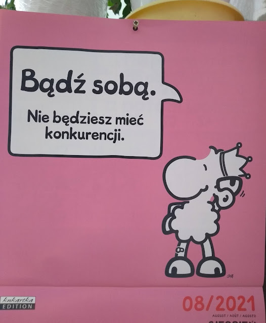 czego można nauczyć się z blogowania - 8.urodziny Adzik-tworzy.pl