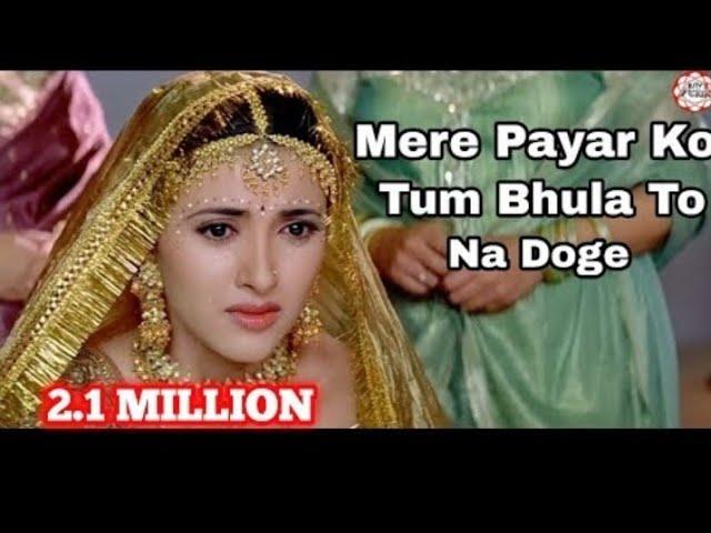 Mere Pyar Ko Tum Bhula to Na Doge |Lyrics HD Video Song |Lyrics in Hindi