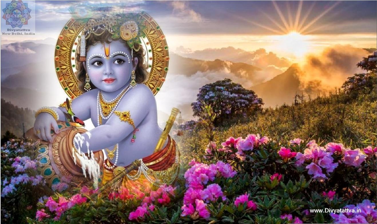 krishna hd wallpaper, cute baby krishna images, baby krishna photoshoot