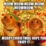 Best Funny Christmas Memes