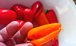 slit the mini pepper
