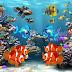 मछलियों के बारे में 50 रोचक तथ्य   50 Facts about Fishes in Hindi