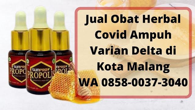 Jual Obat Herbal Covid Ampuh Varian Delta di Kota Malang WA 0858-0037-3040